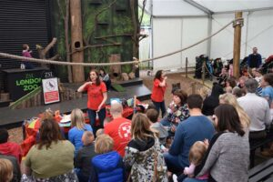 9 London Zoo Special Children's Day 2015