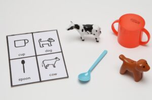 Using Makaton symbol LOTTO with objects of reference to teach vocabulary